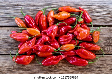 Ripe red Habanero peppers on rustic wooden table in bright sunlight.