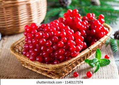 Ripe red viburnum berries in a wooden bowl on wooden table