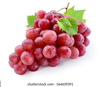 Ripe red wet grape with drops. Pink bunch with leaves isolated on white. With clipping path. Full depth of field.