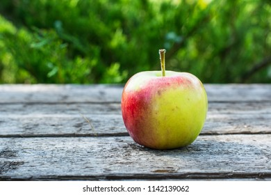 Ripe red and yellow apple on wooden table. Apple in garden. Vegetarian concept. Autumn harvest. Still life food.