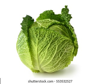 Ripe savoy cabbage on white background