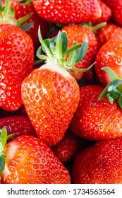 Ripe Strawberries. Juicy Fruits. Seasonal fruit. Healthy dessert. Fruit for a slimming diet. Vegetarian dish. Strawberries macro photo. Zoom in on strawberries. Fruit in a basket. A lot of strawberrie