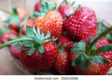 Ripe strawberry in wooden basket just pick from tree ,red fruit,plant in countryside farm,feel fresh and sweet, fruit macro photography concept