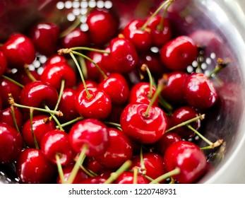 Ripe sweet cherries in steel colander, Harvest time.