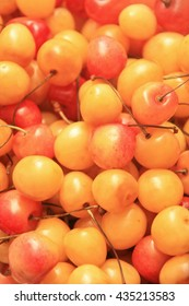 ripe tasty berries of yellow and red sweet cherry