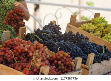 Ripe and tasty grapes of different varieties on the market counter, close-up