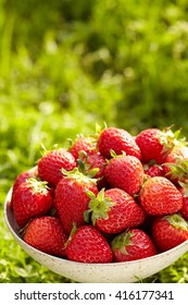 Ripe and tasty strawberries in a bowl on the grass.