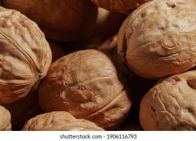 ripe walnuts in a shell close-up