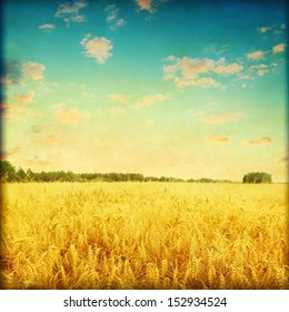 Ripe wheat field at sunset in grunge and retro style.