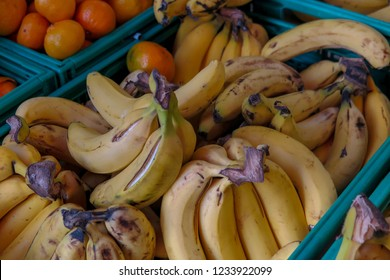 Ripe, yellow bananas lie on the storefront for sale Fruits in the Supermarket Showcase-Closeup of yellowish delicious cavendish banana. - Shutterstock ID 1233922099