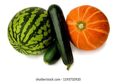Ripened watermelon, zucchini and pumpkin on a white background