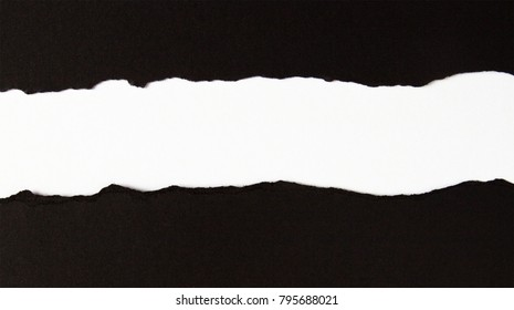 Ripped black and white paper, copy space.