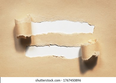 Ripped brown paper. Two holes with rolled torn edges on white paper background