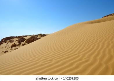 Rippled sand dunes under blue sky, southern Negev Desert, Israel