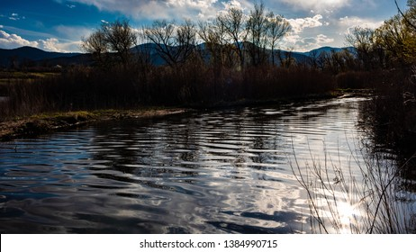 Ripples on Bear Creek as it enters lake with spring leafless trees in background and sun reflecting off surface