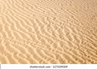 Ripples on the golden sand pattern and texture