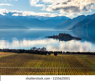 The Rippon Vineyard vines in Wanaka on the South Island of New Zealand. The vineyard sits along Lake Wanaka at the base of large mountains. Partly cloudy skies can be seen above the mountains.