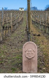 RIQUEWIHR, FRANCE - FEBRUARY 23, 2017:  Stone plaque to mark the Schoelhammer plot of land where Riesling grapes are grown by wine producer Hugel et Fils within the Grand Cru Schoenenbourg.