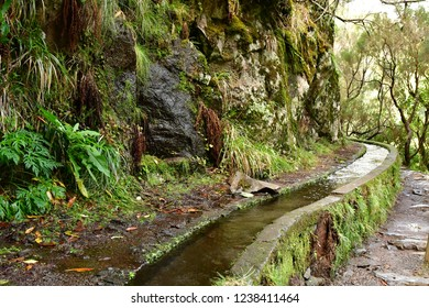 Risco; Madeira; Portugal - february 24 2018 : the 25 fountains levada walk