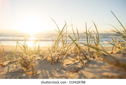 Rise and Shine campers! Beautiful refreshing Australian Gold Coast beach scene with sunrise over the ocean and sand grass in the foreground.