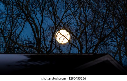 Rise of the super red wolf moon, over house and trees, January 20th 2019 Nature photography