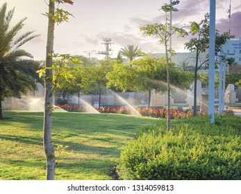 Rishon LeTsiyon, Israel-April 29, 2013: Morning automatic watering of the lawn in the Ha-Manhigim Garden in the city.