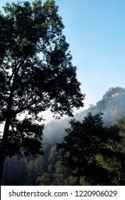 Rising fog, early morning misty mountains, Natural Bridge State Resort Park, Slade, Kentucky, USA