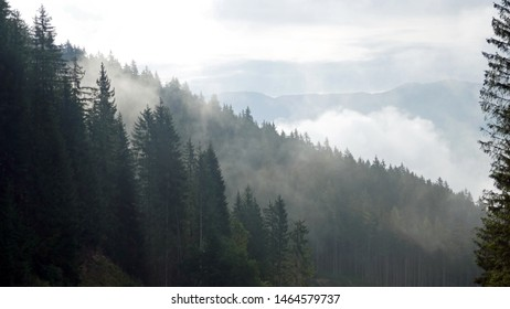 rising fog in the morning in the mountains