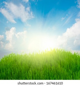 rising sun and spring fresh green grass under blue sky