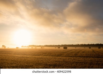 Rising sunshine over fields