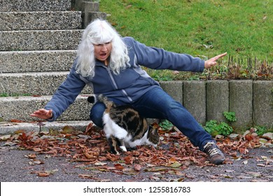 Risk of accident from pets. An elderly woman stumbles over a cat