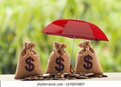 Risk protecting, wealth management and long term money investment, financial concept: Arrange coins and US dollar bag Under the red umbrella. Depicts asset security for sustainable growth.