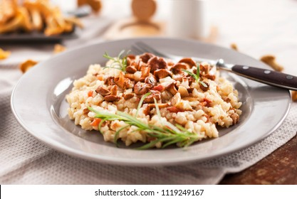 Risotto with chanterelle. Dish with a chanterelle. Food and drink.