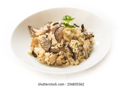 Risotto with oyster mushrooms, Italian cuisine