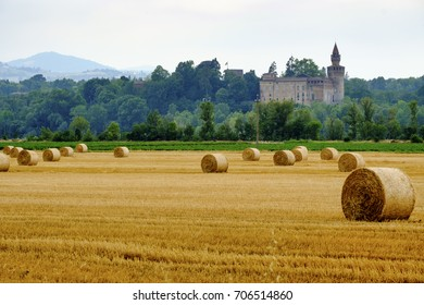 Rivalta Trebbia (Piacenza, Emilia Romagna, Italy): country landscape with the historic castle