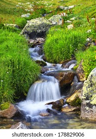 River among grass and stones. Beautiful natural landscape
