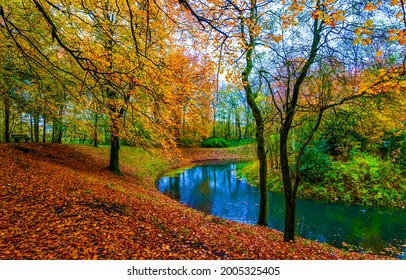 A river in the autumn forest. Forest river in autumn fall. Autumn forest river landscape. River in autumn forest
