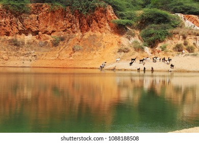 river bank with livelihood