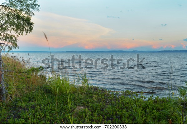 The river before sunset, cloudy sky, grass, little pine, birch.