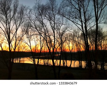 River behind the trees under sunset lights, horizontal image