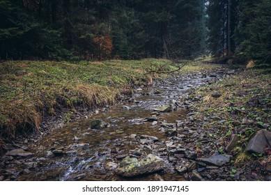 River Bila Ostravice in Moravian-Silesian Beskids mountain range in the Czech Republic, view in Bila village