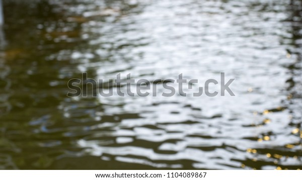 river blur nature background