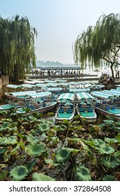 River boats moored among the lilies on the Kunming Lake, Beijing, China
