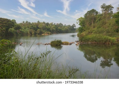 River Cauvery or Kaveri flowing through the forest in Coorg, India
