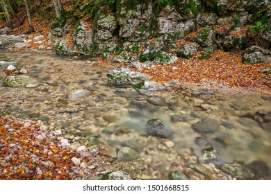 River in colorful autumn park with yellow, orange, red, green leaves. Golden colors in the mountain forest with a small stream. Season specific.