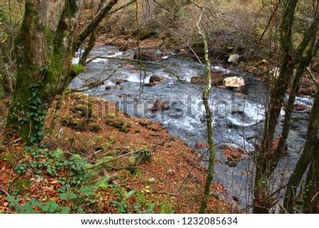 river-croatia-autumn-2018-450w-123208563