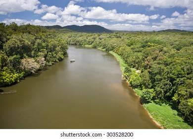 River in Daintree Rainforest in Queensland, Australia
