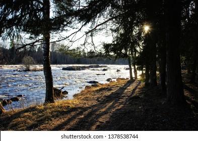 River Västerdalälven in Dalarna,Sweden on a sunny late afternoon.