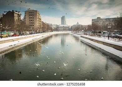 River Dambovita in Bucharest city