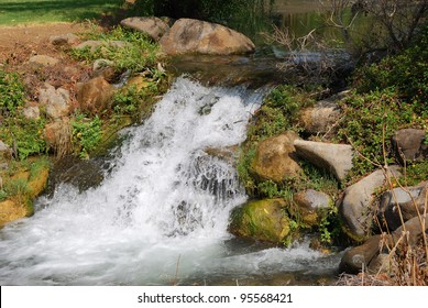 River Dan in the Upper Galilee in northern Israel.